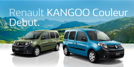 Renault KANGOO Couleur